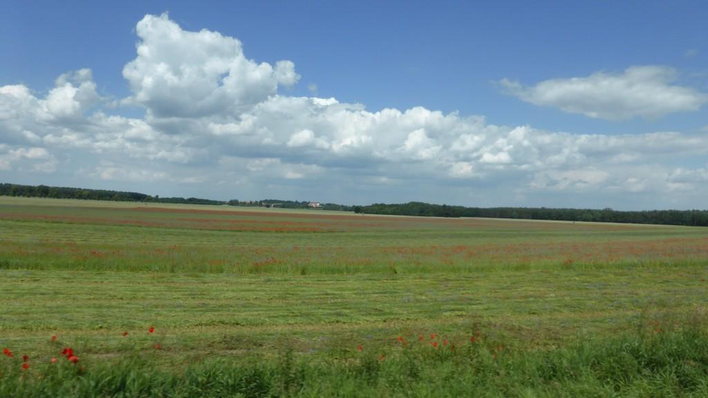 P1050158 Mecklenburgische Seenplatte