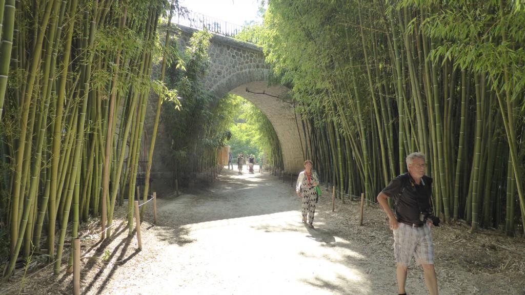 La Bambouseraie